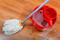 Maid Agency Singapore, Find Domestic Helper, FDW Singapore
